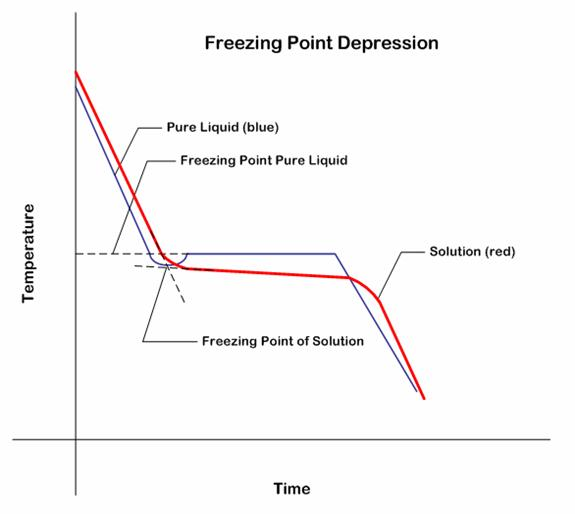 effects of salt on freezing point The presence of a solute lowers the freezing point of any solvent this effect is called (depending on the salt how does a solute affect the freezing point.